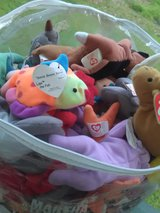 Bag full of McDonald's Teenie Beanie Babies in Coldspring, Texas