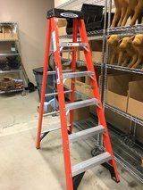 6 FT Werner Ladder in Elgin, Illinois