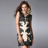 Sleeveless Lace Floral Handmade Sexy Cocktail Dress in Huntsville, Texas