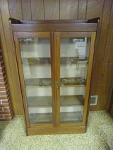 Vintage Cabinet in Naperville, Illinois