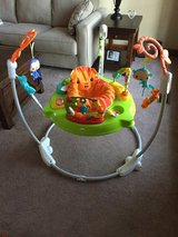 Baby play bouncy in Bolingbrook, Illinois