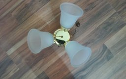 Ceiling Fan Light Fixture in The Woodlands, Texas