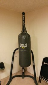 punching bag and stand in 29 Palms, California