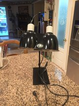 Zoo Med Reptile Light and Bulbs in Fairfield, California