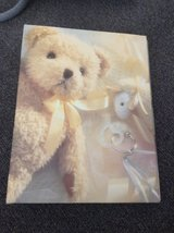 Baby Photo Album in Naperville, Illinois