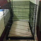XXL Dog Crate & Memory Foam Dog Bed in bookoo, US