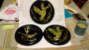Abalone ducks in Fort Campbell, Kentucky