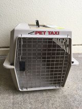 Pet Taxi for small dog or cat in Okinawa, Japan