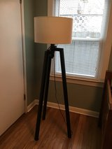 Floor Lamp in Naperville, Illinois