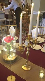 Gold Candelabra - Wedding Centerpiece - Proposal Prop - Beauty and the Beast in Lockport, Illinois