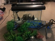 10 gallon fish tank and accessories in Okinawa, Japan