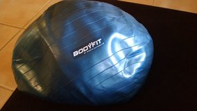 Bodyfit Exercise Ball in Chicago, Illinois