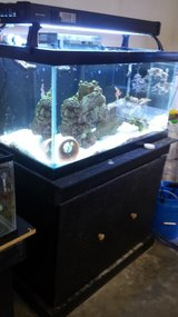 55 Gallon True Saltwater Tank in Camp Lejeune, North Carolina