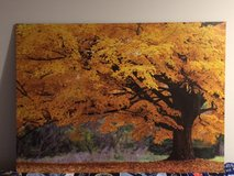 Classic Fall Tree Painting in Stuttgart, GE
