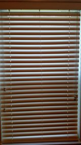 2 INCH FAUX WOOD BLINDS - TEN (10) total in Perry, Georgia