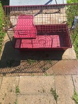 Cage for pets in Duncan, Oklahoma