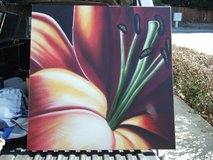 WALL PICTURE PAINTING/FLOWER in Sacramento, California