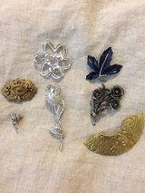 Brooch collection in Phoenix, Arizona