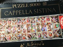 8000 piece jigsaw puzzle in Chicago, Illinois