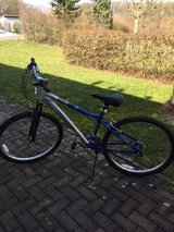 Like New Dynafit Bicycle in Ramstein, Germany