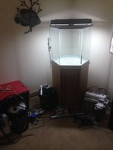 40 gallon  fish tank, plus so much more! in Okinawa, Japan