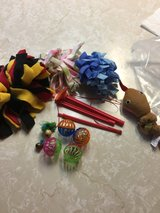 Cat toys in Fairfield, California