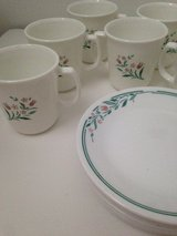 Corelle Rosemarie Pattern Cups and Desert Plates in Bolingbrook, Illinois