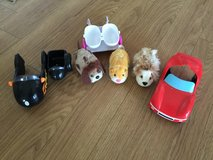 4 Hampsters & 3 cars in Camp Lejeune, North Carolina