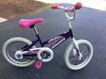 """16"""" Bicycle in Glendale Heights, Illinois"""