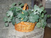 Small Fake, Silk Plant in Basket - Nice! in Plainfield, Illinois