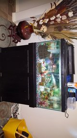 40 gallon fish tank stand everything included $200 in Conroe, Texas