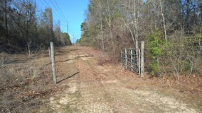 Undeveloped 13.13 acre tract of land in Warner Robins, Georgia
