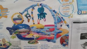 Baby Einstein Ocean Adventure play gym in 29 Palms, California