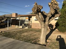 House for sale in Alamogordo, New Mexico