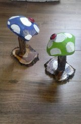 Fantasy Mushrooms For Garden in Alamogordo, New Mexico