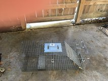 Live Trap wire cage type in Conroe, Texas