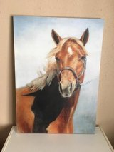 Horse print on canvas in Fort Leonard Wood, Missouri