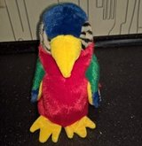TY BEANIE BUDDY JABBER   YEAR 1999 PLUSH MULTI-COLOR PARROT BIRD in Ramstein, Germany