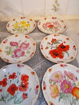 REDUCED Collection of the Royal British Legion Poppy Plates in Lakenheath, UK