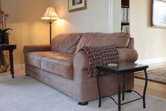 Sueded Leather Queen Sleeper Sofa with TV head rest in Bartlett, Illinois