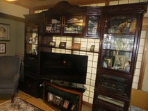 Marked down!!! Chinese Rosewood Entertainment Center in Okinawa, Japan