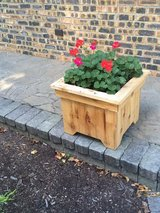Cedar Planters in Elgin, Illinois