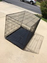 XL Dog Crate in Camp Pendleton, California