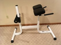 Parabody Serious Steel hyperextension roman chair.  Gym quality. in Chicago, Illinois