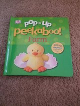 Pop up peekaboo!  Farm baby book in Chicago, Illinois