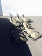 Goose Decoys GHG in Bolingbrook, Illinois