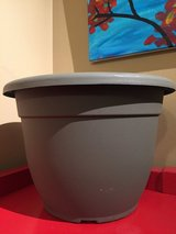 "12"" Plastic Planter #1 in Naperville, Illinois"