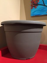 "12"" Plastic Planter #2 in Naperville, Illinois"