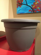 "12"" Plastic Planter #3 in Naperville, Illinois"