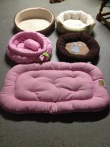 Dog Beds- Many to Choose from! in Houston, Texas